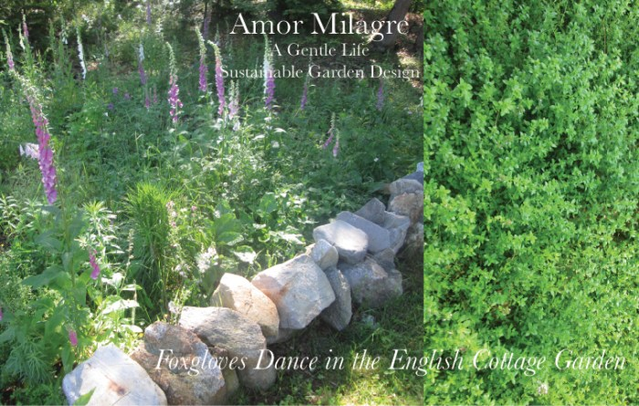 Amor Milagre Custom Built Home Interior Design Moments Goodnight, Dove Cottage 2019 Ethical Organic foxglove english cottage garden amormilagre.com