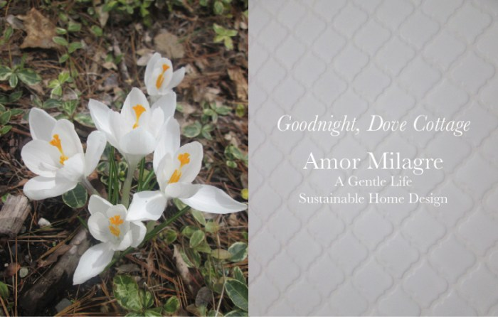 Amor Milagre Custom Built Home Interior Design Moments Goodnight, Dove Cottage 2019 Ethical White Shower Tile Crocus amormilagre.com