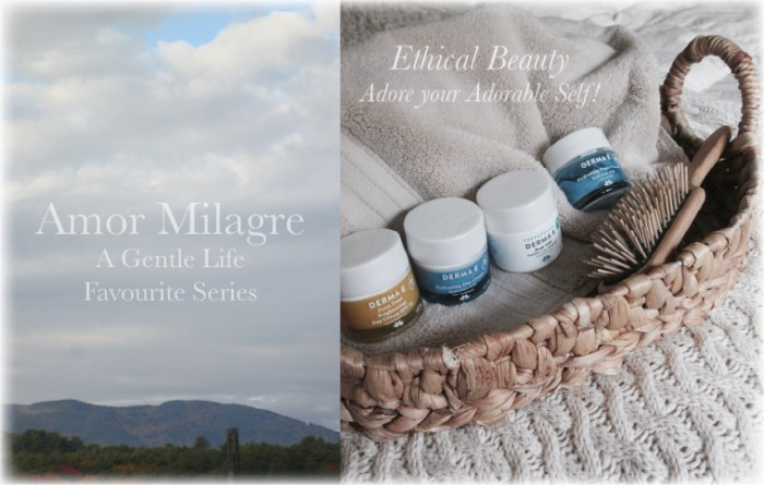 Amor Milagre Ethical Beauty Product Brand Healthy Skin Derma E Fall 2019 Favourite Series Non-Toxic Health Ethical Organic Gift Shop Handmade Gift Shop Art Vegan Baby & Child amormilagre.com
