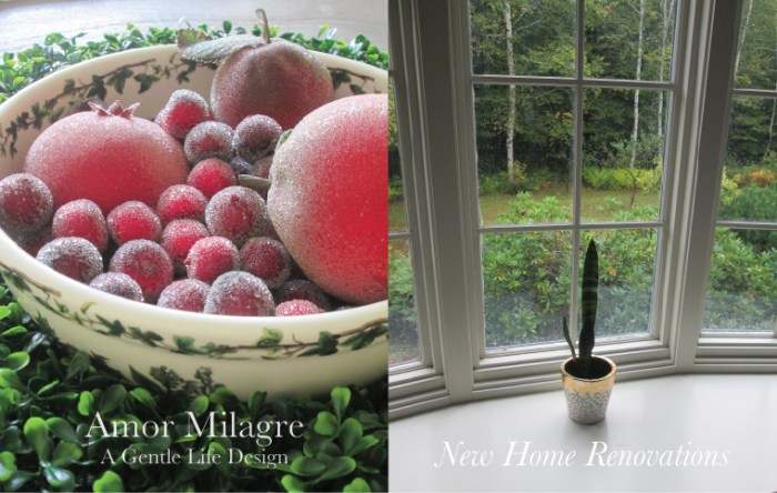 Amor Milagre New Home Renovation Design Diaries 1st Dusty Days 2019 Ethical Organic Gift Shop Handmade Gift Shop Art Autumn decor sugar fruit garden bay windows amormilagre.com