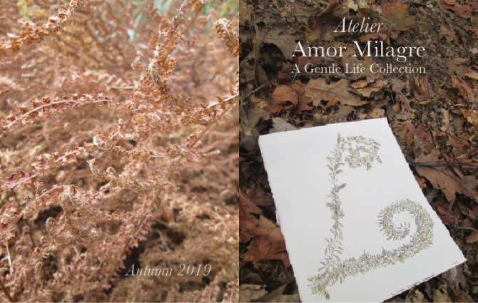 Shop Amor Milagre Autumn 2019 Ethical Romantic Gift Collections Illustrated Alphabet Letter L golden leaf amormilagre.com