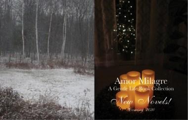 Amor Milagre New Loving Novel Series! peaceful 2020 Ethical Organic Gift Shop fiction books amormilagre.com