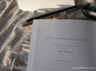 Amor Milagre Colette & Pipette Won't Use the Toilet New Ethically Handmade Children's Book gift amormilagre.com
