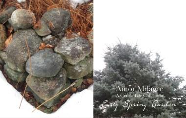 Amor Milagre Early Spring Garden Rose Cottage 4 2020 Ethical Organic Gift Shop Handmade Art amormilagre.com