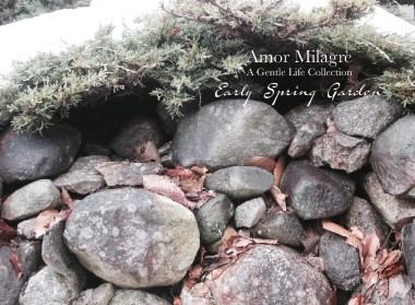 Amor Milagre Early Spring Garden Rose Cottage 8 2020 Ethical Organic Gift Shop Handmade Art amormilagre.com