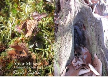 Amor Milagre Faerie Castles Spring Garden Rose Cottage 2020 Ethical Organic Gift Shop amormilagre.com