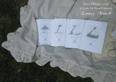 Amor Milagre Leona's Miracle 1st Spring Festival The Love Letter Diaries #4 ethical book series amormilagre.com 5