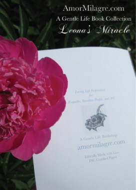 Amor Milagre Leona's Miracle 1st Spring Festival The Love Letter Diaries #4 ethical book series amormilagre.com 6