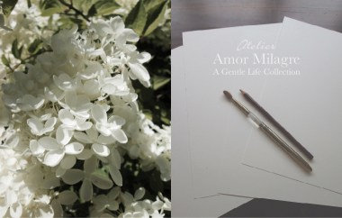 Amor Milagre Atelier Artist Studio Ethical Organic Gift Shop hydrangea amormilagre.com