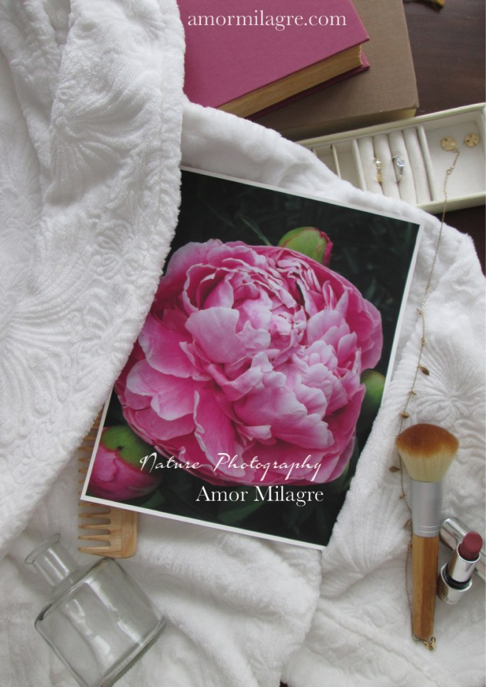 Amor Milagre Pink Peony Flower Bloom nature photography amormilagre.com