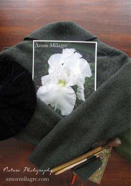 Amor Milagre White Dewdrop Iris Flower Nature Photography 1 amormilagre.com