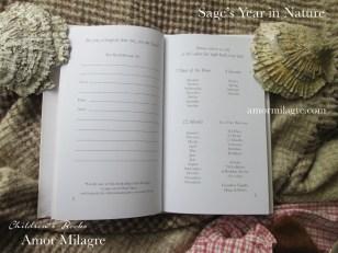 Amor Milagre Sage's Year in Nature Children's Book amormilagre.com 5