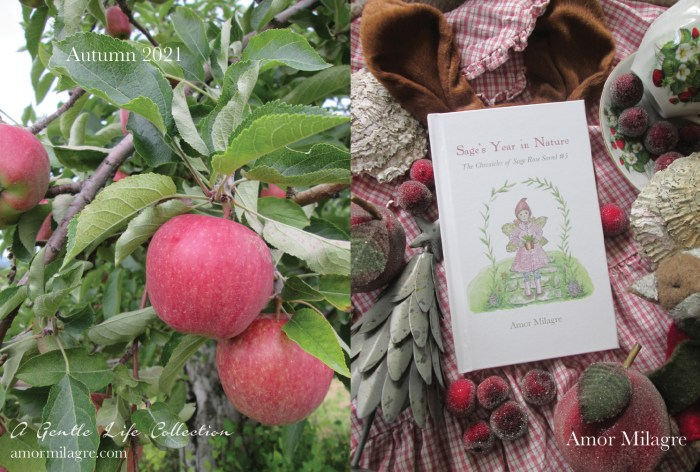 Amor Milagre Children's Books Sage's Year in Nature, Apple Orchard Collection Nature Photography amormilagre.com
