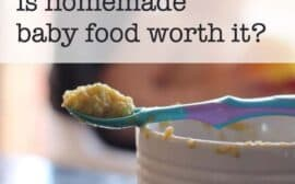 is homemade baby food worth it