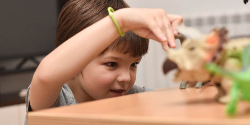 child focusing on playing with dinosaurs