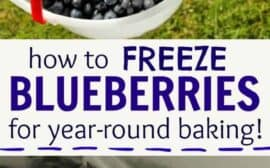 How to easily freeze blueberries for year round baking the easy way!