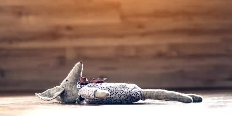 stuffed animal laying on floor