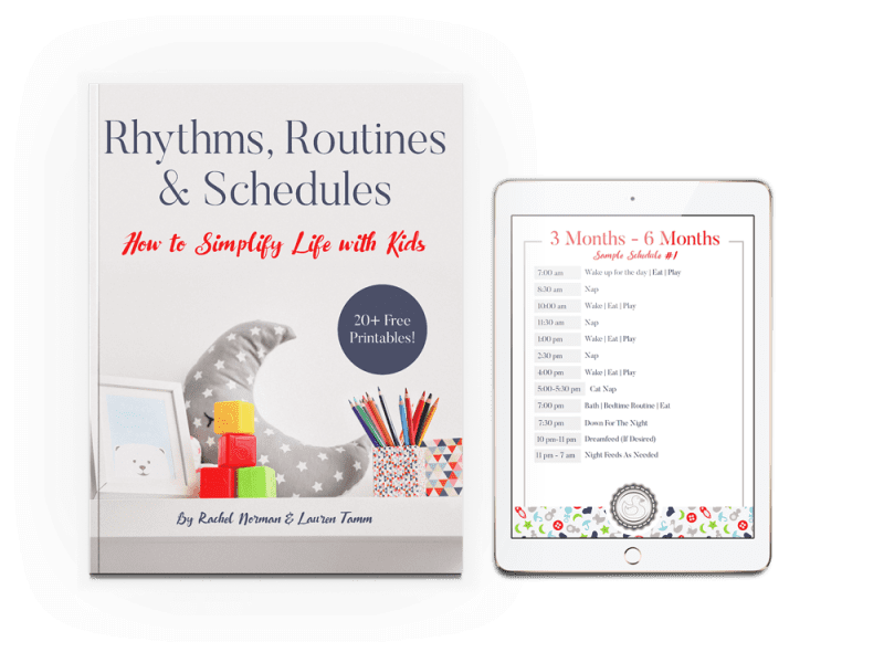 9 to 12 month routine book