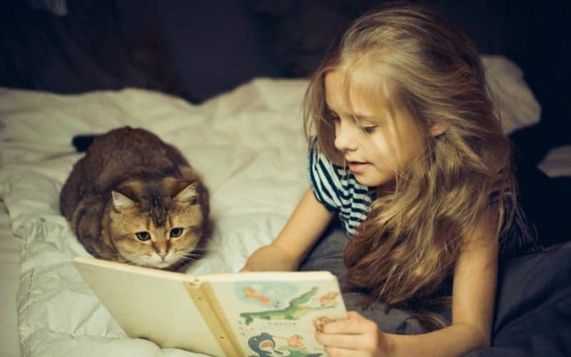 little girl relaxing and reading book on bed with a cat