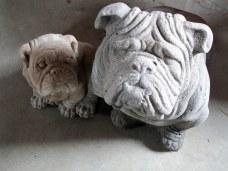 concrete bulldog statues