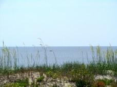 sea oats and kayaker on ocean, Jekyll Island