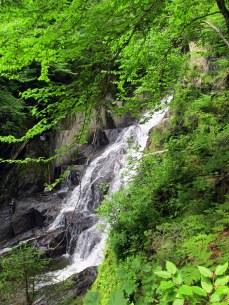waterfallLittleHellgateFallsPittsburgNH9July2015