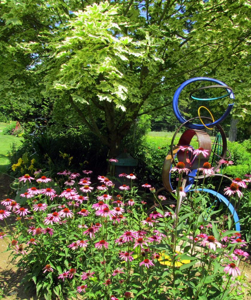 """""""Ring Toss"""" sculpture and echinacea"""