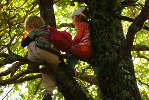 Aprendizaxe activa na natureza