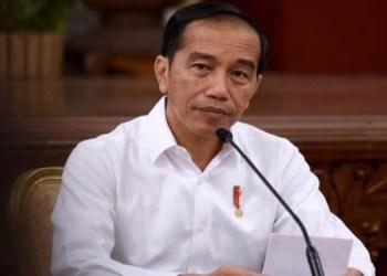 Presiden Jokowi (JPNN)