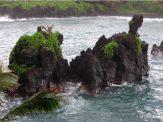 Hawaii 3 008
