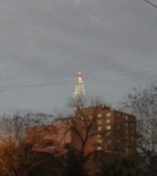 TV tree 122416