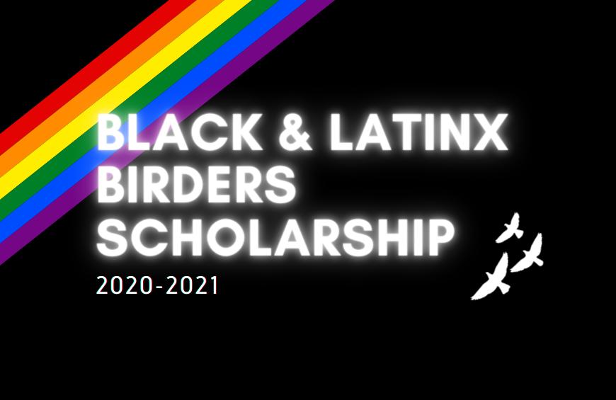 BECA BLACK & LATINX BIRDERS 2020-2021 BANDERA DEL ORGULLO EN EL FONDO.