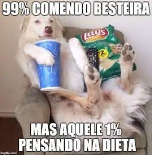 Cachorro comendo besteira