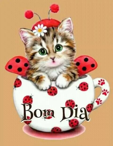 Bom dia do gatinho