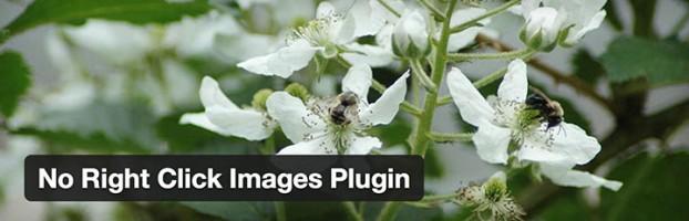 no-right-click-images-plugin