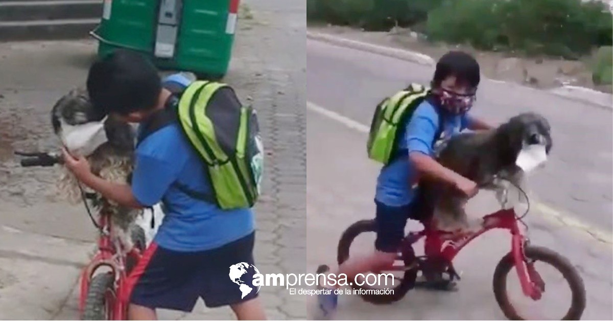 ¡Conmovedor! Video de niño ecuatoriano da la vuelta al mundo
