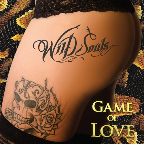 wild-souls-cover