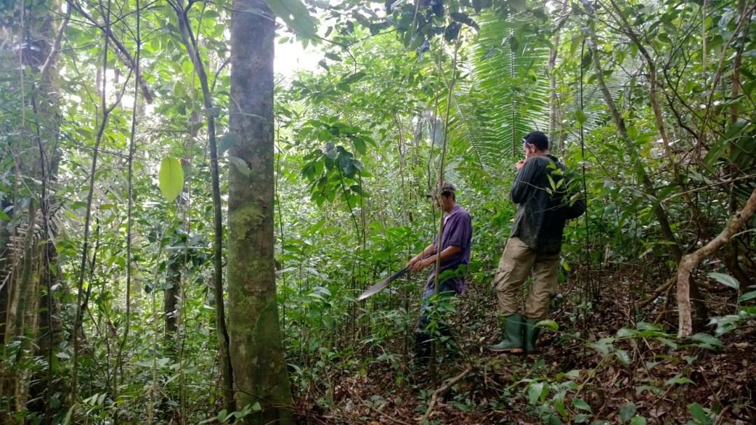 Recorridos en compañia con guias de campo y el Biólogo E. Flores en la Comunidad de Agua Caliente Sector Ecoturistico de Puerto Cortes.