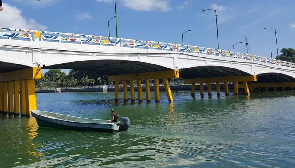 Diseño del Puente de La Laguna una Obra de Arte