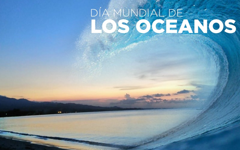 8 de Junio Celebramos el Día Mundial de los Océanos.