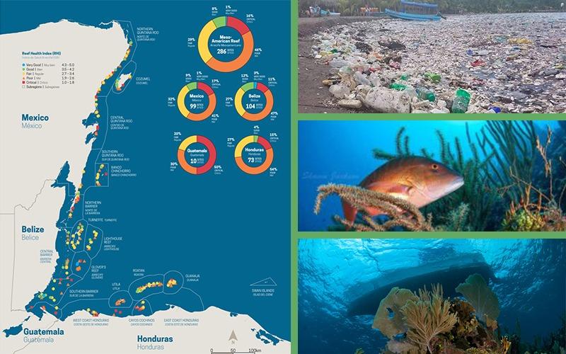 Basura que arrastra el Rio Motagua afecta arrecifes Hondureños.
