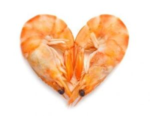 Shrimp and Cholesterol