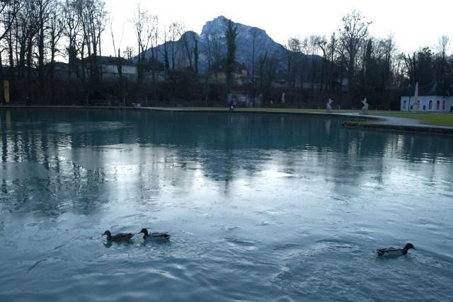 Salzburg AustriaF7372