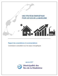 image-du-rapport-consultation