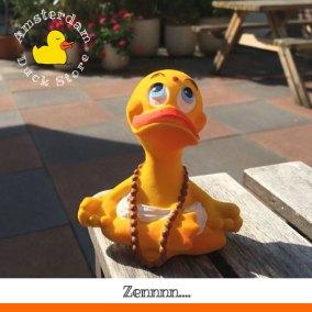 Finding our inner duck @ De Nieuwe Yogaschool Amsterdam.
