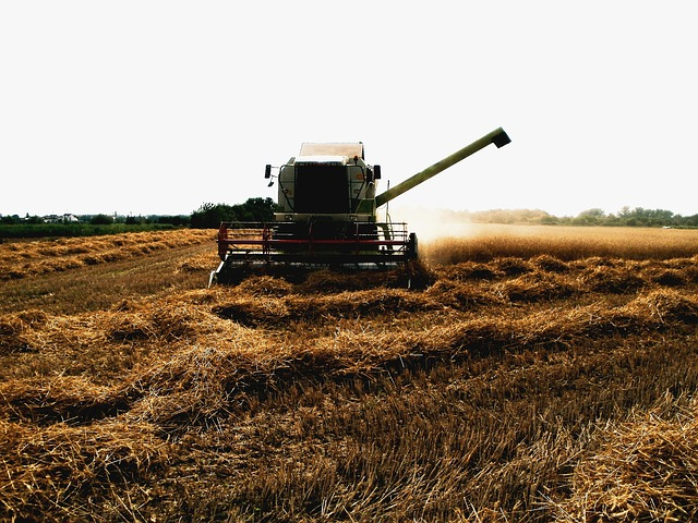 Farming (235135)