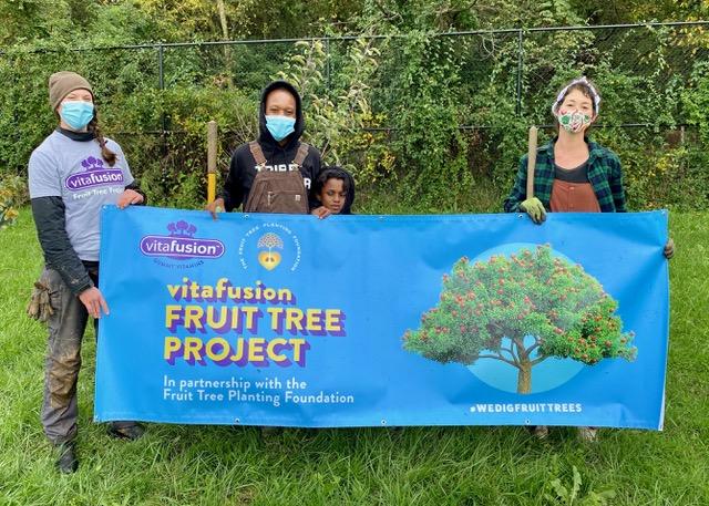 Image courtesy of Vitafusion Fruit Tree Project (309090)