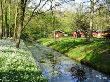 7168_pays-bas-camping-hostel-amsterdam-het-amsterdamse-bos-girltrotter