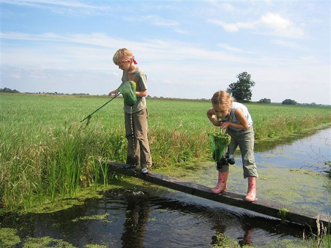 Children catching fish in nets at Woeste Westen and Jeudgland Amsterdam