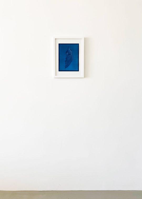 August_Blum_Accretion-scaled